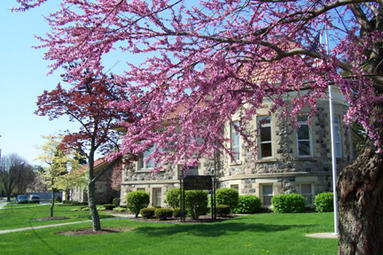 Spring View of the Library